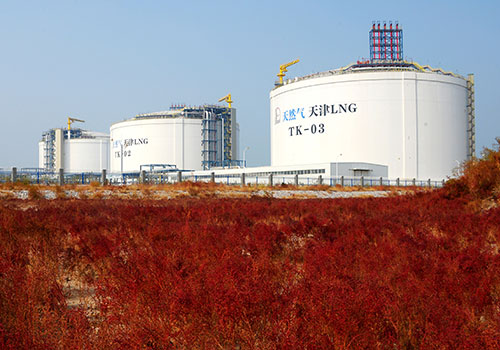 Chinese gas demand growth to slow